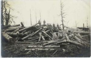 RPPC of Logging for Doernbecker Mfg Co. Portland Oregon OR