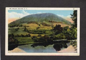 NY Mt Holley Mountain Walton New York Vintage Postcard