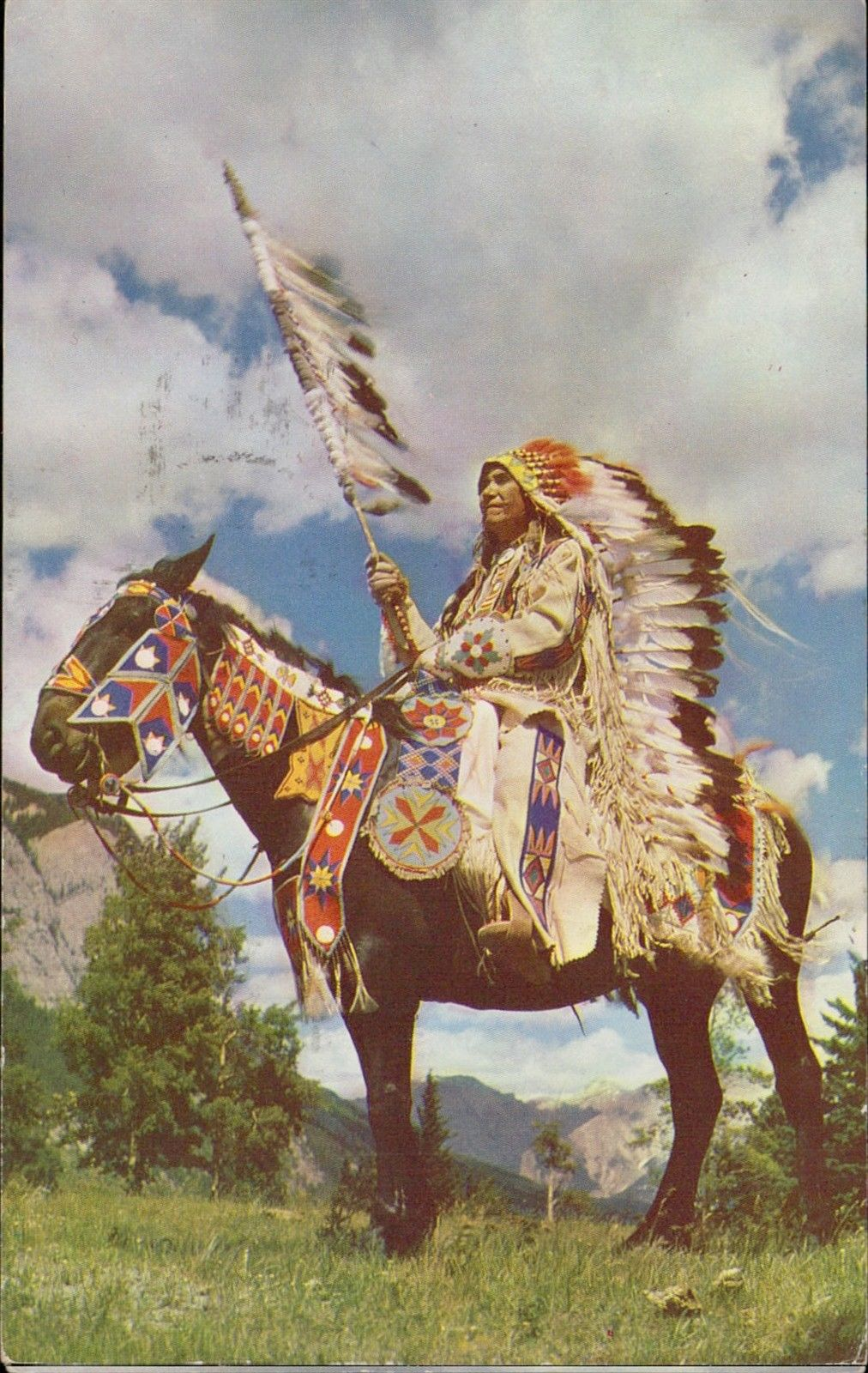 Indian Chief Costume Horse Hippostcard