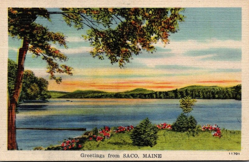 Maine Greetings From Saco