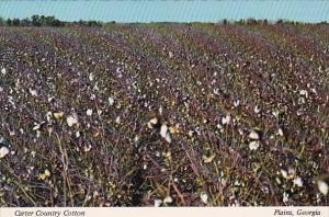 Carters Country Cotton Plains Georgia