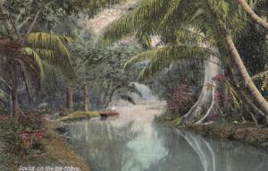 Scene on the Rio Cobre , Jamaica , 00-10s