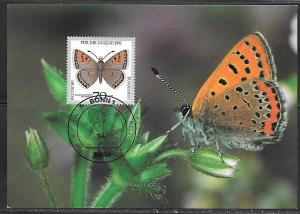 1991 Germany 70+30 Butterfly stamp maximum card