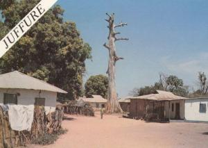 Juffure Gambia Tribal Houses African Gambian Postcard