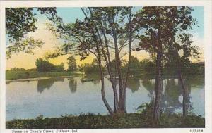 Indiana Elkhart Scene On Conns Creek