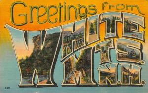 White Mts New Hampshire~Large Letter Linen Postcard~Man on Mountain~Train~WMCPL