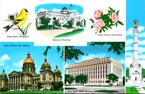Iowa Multi View With State Bird State Flower and More