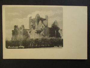 Mint Vintage Dunbrody Abbey Wiexford Ireland Real Picture Postcard