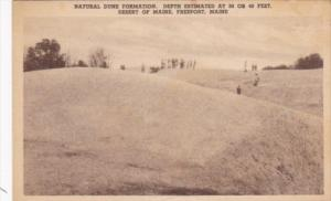 Maine Freeport Natural Dune Formation Desert Of Maine