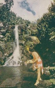 Hawaii Beautiful Hawaiian Waterfall