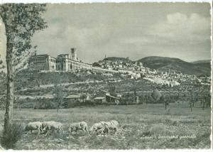 Italy, Assisi, Panorama generale, used Postcard