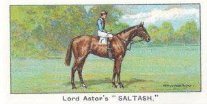 Saltash Winners On The Turf 1923 Eclipse Stakes Horse Racing Cigarette Card