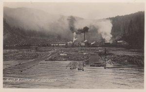 RP: ENGLEWOOD , B.C. , Canada , 1910s ; Nimpkish Lumber Company