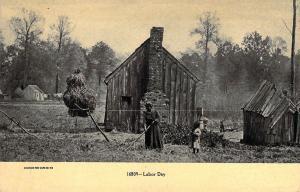 Black Americana, Black Family Farm, Labor Day,  Old Postcard