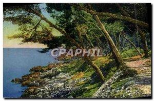 Old Postcard Menton A Sous Bois in Cap Martin