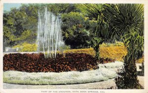 Part of the Grounds NAPA SODA SPRINGS, CA Napa County c1910s Vintage Postcard