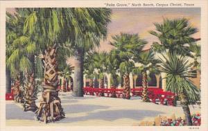 Texas Corpus Christi Palm Grove North Beach