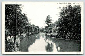 Troy Pennsylvania~Road Along Longs Pond~Reflection of Trees~1920s B&w Postcard