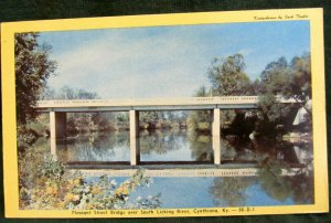 CYNTHIANA, Kentucky ~ South Licking River Pleasant Street Bridge Postcard