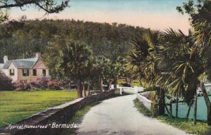 Bermuda A Typical Homestead