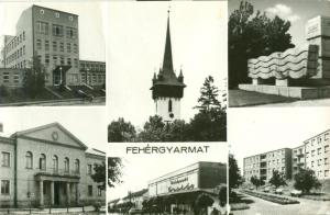 Hungary, Fehergyarmat used real photo Postcard
