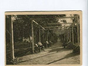 263121 USSR Essentuki Lower Park Alley Vintage GIZ postcard