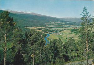 View of Lesja, Gudbrandsdal valley, Norway, 50-70s