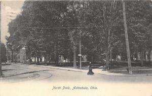 Ashtabula Ohio~North Park~Lady Crossing Street~Sign on Post~1907 Postcard