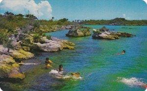 Mexico Xel-Ha Lagoon Quintana Roo