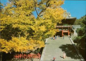 The Tsurugaoka Hachimangu Kamakura Japan shrine Japanese Mars