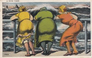 COMIC, 1900-10s; A FINE VIEW, Three Women looking leaning on rail on windy day