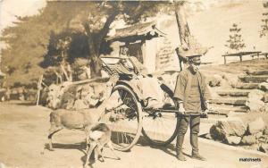 1928 Japan Nara Deer Park RPPC Real Photo postcard 6029