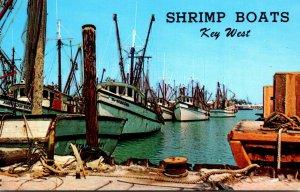 Florida Key West Shrimp Boats In The Harbor
