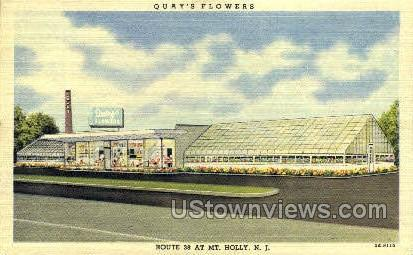 Quays Flowers  Mt Holly NJ Unused