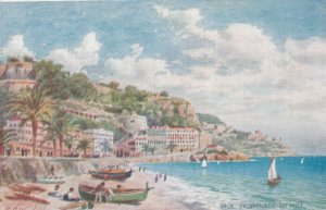 NICE , France , 1900-10s ; Promenade Du Midi ; TUCK 109 ; Artist Wimbush
