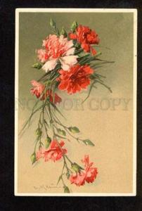 051406 CARNATION Flowers by C. KLEIN vintage TSN Publ. PC