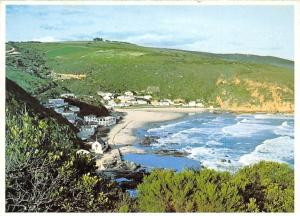 South Africa, Cape, Herold's Bay, near George
