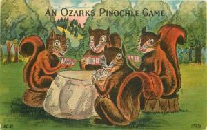 Blair Humor Squirrels Ozarks Pinochle Game Postcard Missouri Colorpicture 3383