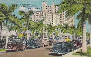 Beautiful Biscayne Boulevard, MIAMI, Florida, 1930-1940s