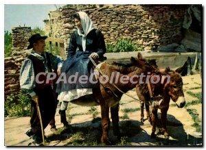 Modern Postcard Corsica Oasis De Beaute A Smile For The gallant