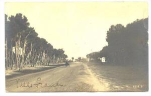 RP; Tree lined dirt road , NAPOLI , Italy , PU-1912