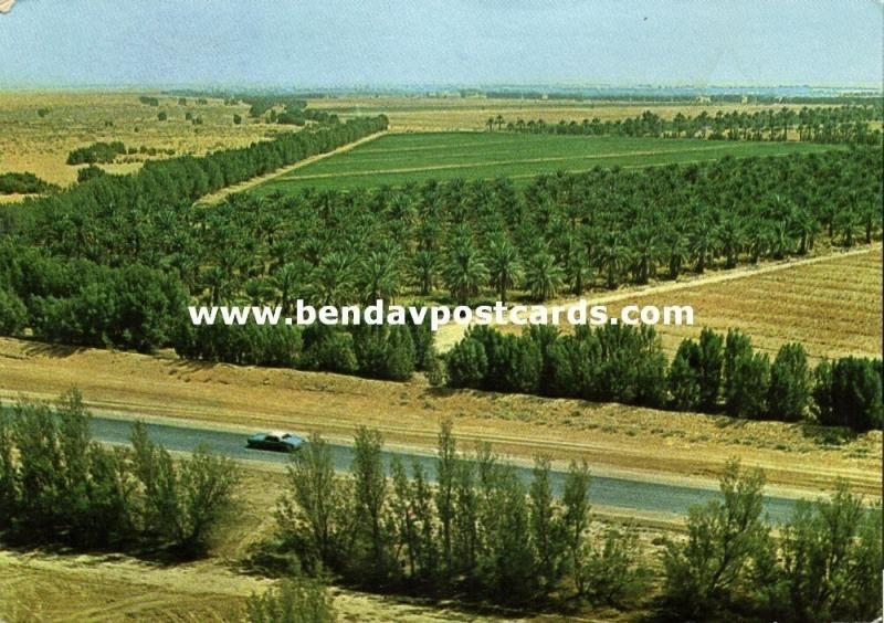 saudi arabia, AL-KHARJ, Cultivated Fields (1970s)