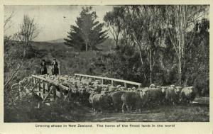 new zealand, Droving Sheep, Home of the Finest Lamb of the World (1930s)