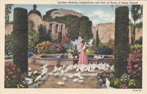 Campanario and Ruins of Stone Church Mission San Juan Capistrano California C...