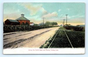 Postcard NY Along the North East & Ripley Trolley Line 1908 View I7