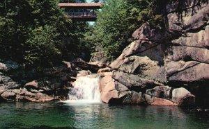 Franconia Notch, NH, Flume, Sentinel Pine Bridge & Pool, Vintage Postcard g8504