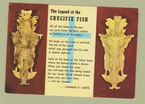 Legend of Crucifix Fish Postcard Skeleton Story Poem Florida Conrad S. Lantz