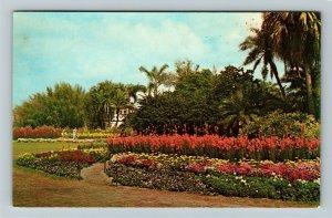 Orlando FL- Florida, Flowers and Palms along shores of Lake Eola,Chrome Postcard