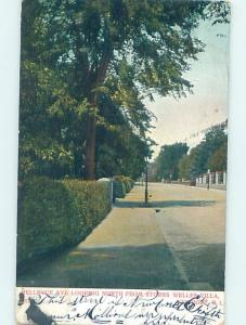 Pre-1907 STREET SCENE Newport Rhode Island RI W2429