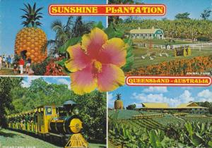 Sunshine Plantation , Sunshine Coast , Queensland , Australia , 50-70s